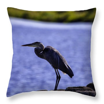 Standing On The Dock Of The Bay Throw Pillow