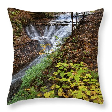 Throw Pillow featuring the photograph Standing On The Edge by Dale Kincaid
