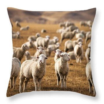 Standing Out In The Herd Throw Pillow