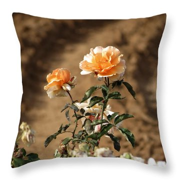 Throw Pillow featuring the photograph Standing Out by Laurel Powell