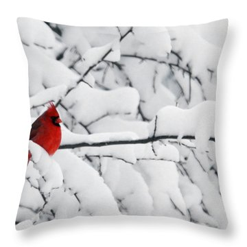Throw Pillow featuring the photograph Standing Out by Shari Jardina