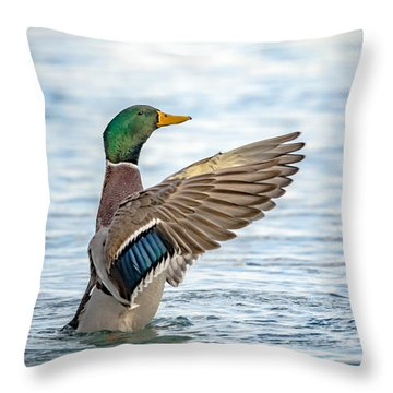 Standing Ovation Throw Pillow