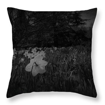 Throw Pillow featuring the photograph Standing Proud by Ryan Photography