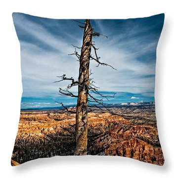 Standing Regardless Throw Pillow by Christopher Holmes