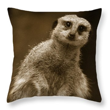 Standing Sentry Throw Pillow