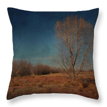 Throw Pillow featuring the photograph Standing Solo by Barbara Manis