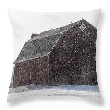 Standing Tall In The Snow Throw Pillow