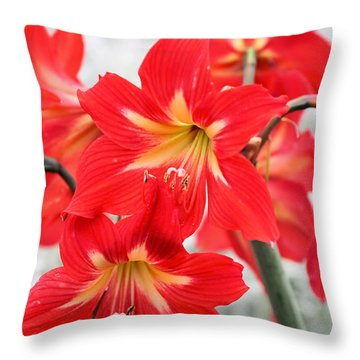 Standing Tall Throw Pillow by Katherine White