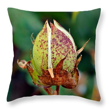 Throw Pillow featuring the photograph Standing Tall by KayeCee Spain