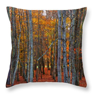 Throw Pillow featuring the photograph Standing Tall On The Natchez Trace by T Lowry Wilson