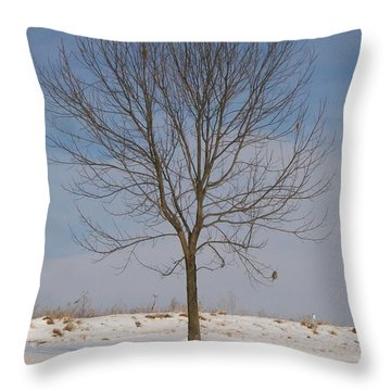 Throw Pillow featuring the photograph Standing Tall by Sara  Raber