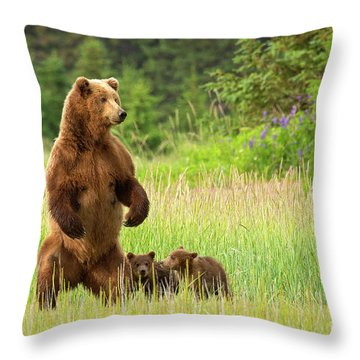 Standing Watch Throw Pillow by Aaron Whittemore
