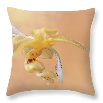Stanhopea Orchid V2 Throw Pillow