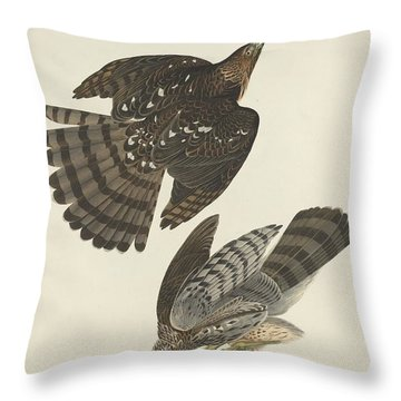 Stanley Hawk Throw Pillow by Rob Dreyer