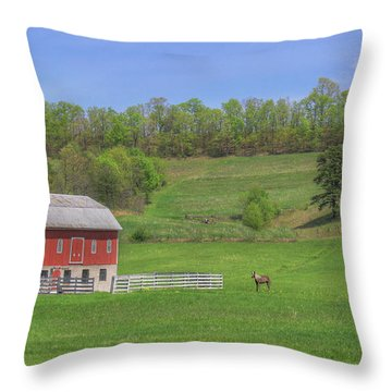 Star And Moon Barn Throw Pillow