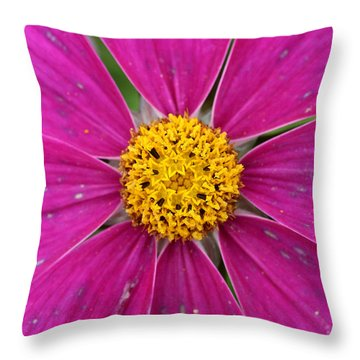 Star Attraction Color Contrast Flower Throw Pillow