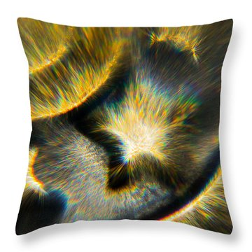 Throw Pillow featuring the photograph Star Burst by Greg Collins