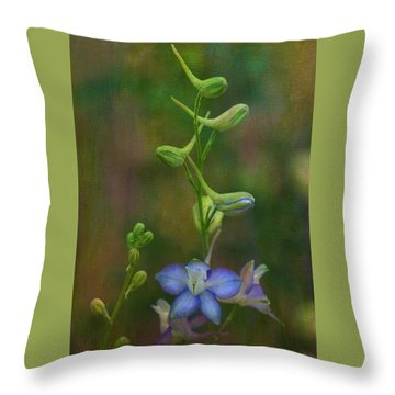 Star Throw Pillow by Carolyn Dalessandro