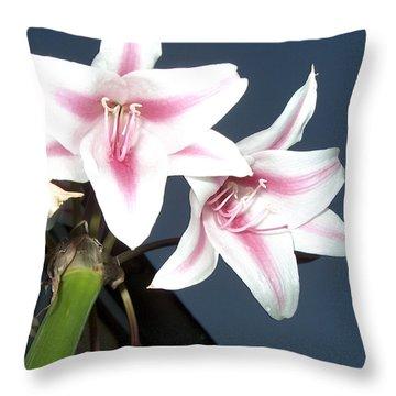 Star Flower Throw Pillow