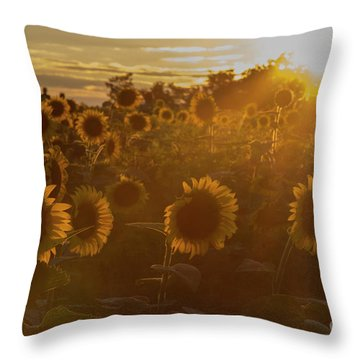 Throw Pillow featuring the photograph Star Gazing by Chris Scroggins