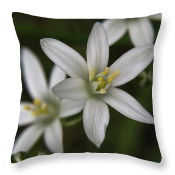 Star Of Bethlehem Throw Pillow