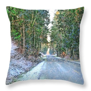 Starbird Road Throw Pillow