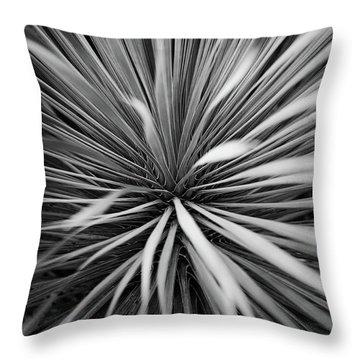 Conservatory Throw Pillows