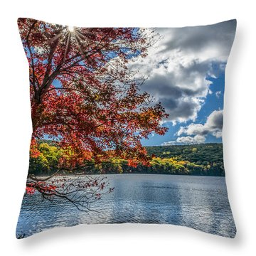 Starburst Tree @ Silvermine Lake Throw Pillow by Angelo Marcialis