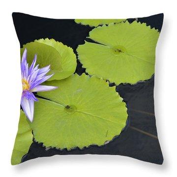 Starburst Waterlily Throw Pillow