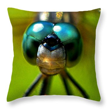 Stare Down With A Dragonfly 001 Throw Pillow