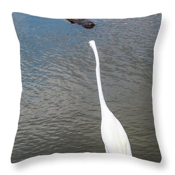 Staredown At Hunting Beach State Park - March 31, 2017 Throw Pillow