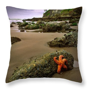 Starfish On The Rocks Throw Pillow by Inge Johnsson