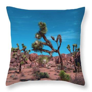 Stargate Of Joshua Tree Throw Pillow