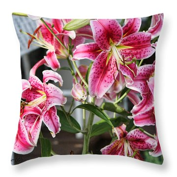 Stargazer Throw Pillow by Denise Romano