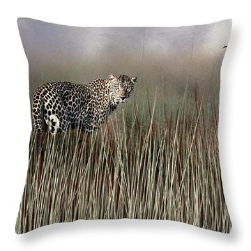 Staring Back Throw Pillow by Diane Schuster