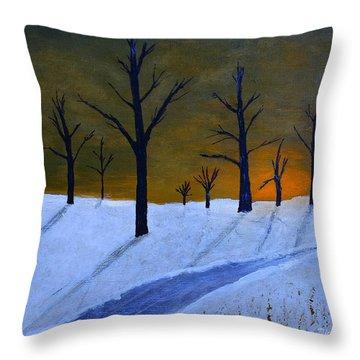 Stark Winter Sunset Throw Pillow