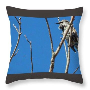 Starling Darling Throw Pillow