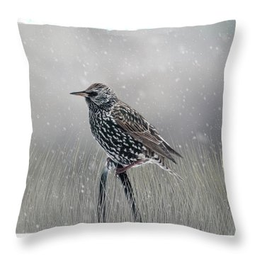 Starling In Winter Throw Pillow