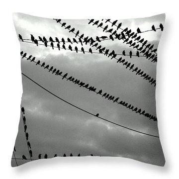 Starlings As Night Falls In Black And White Throw Pillow