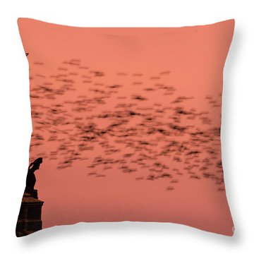 Starlings Sweeping Past Aberystwyth War Memorial Throw Pillow