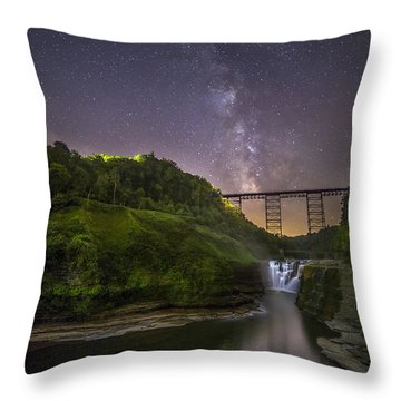 Wny Throw Pillows