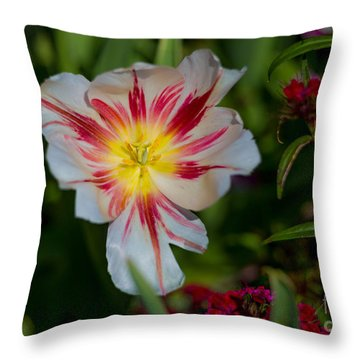 Starry Tulip Throw Pillow