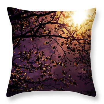 Stars In An Earthly Sky Throw Pillow by Vivienne Gucwa