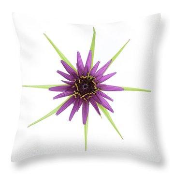 Stars Of Salsify Throw Pillow