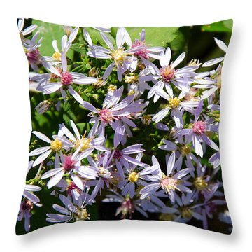 Stars Of The Autumn Throw Pillow