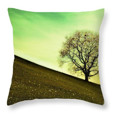 Starting Springtime Throw Pillow by Hannes Cmarits