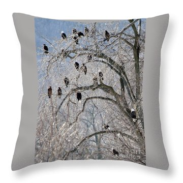 Throw Pillow featuring the photograph Starved Rock Eagles by Paula Guttilla