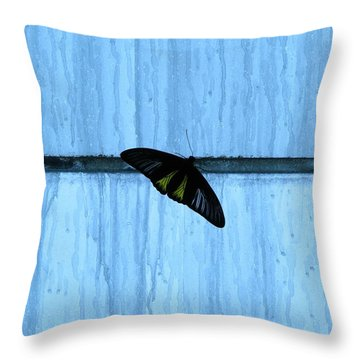 Stasis Throw Pillow
