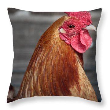 State Fair Rooster Throw Pillow by Carol Groenen