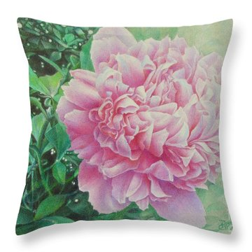 State Treasure Throw Pillow by Pamela Clements